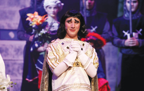 Curtain falls on Shrek: The Musical