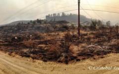 Pateros still recovering following summer firestorm