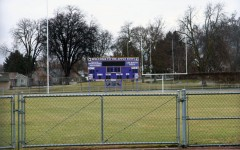 Panthers say goodbye to natural grass; FieldTurf on the way