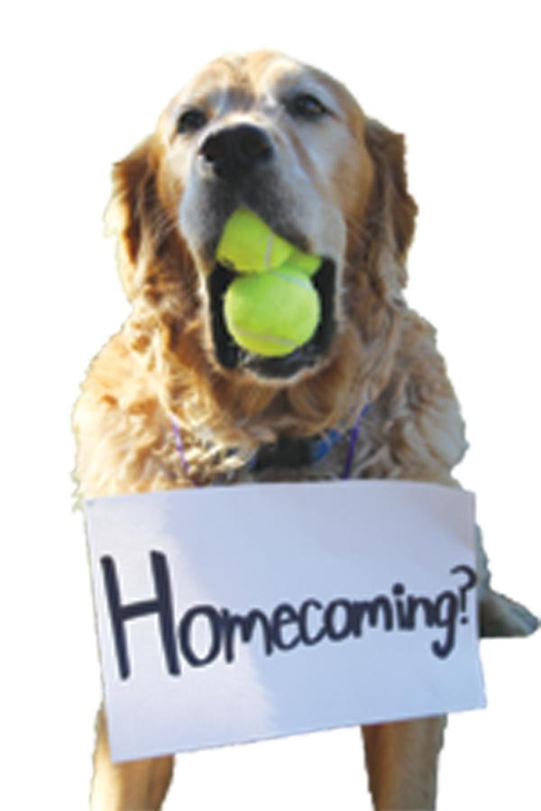 How to ask her to Homecoming