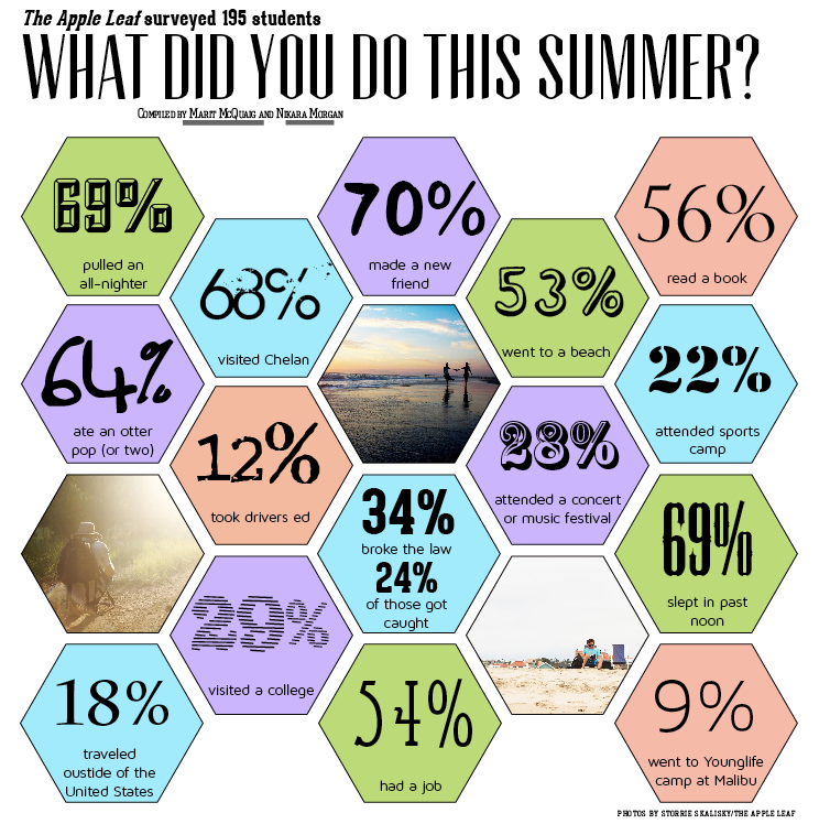 How WHS spent their summer: survey results