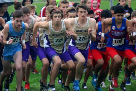 Seniors secure spot at State cross country meet