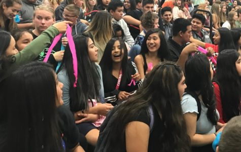PRIDE assembly fosters school spirit
