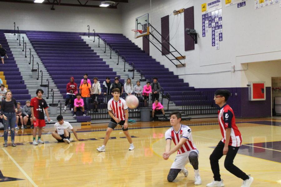 Homecoming week: Powderpuff and Buffpuff raise $2,200